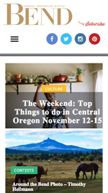 Oregon Media Website on Phone